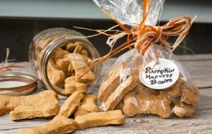 Pumpkin Dog Biscuits