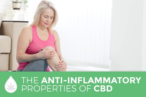 CBD: An Anti-Inflammatory