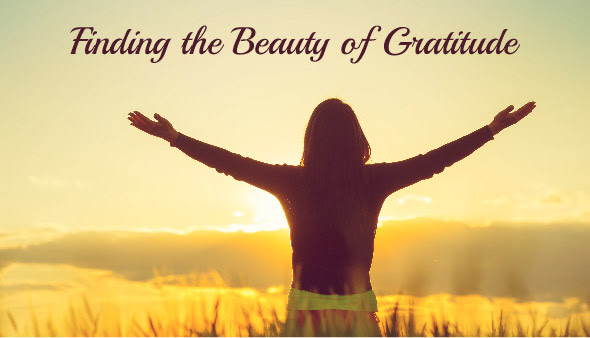 Finding the Beauty of Gratitude