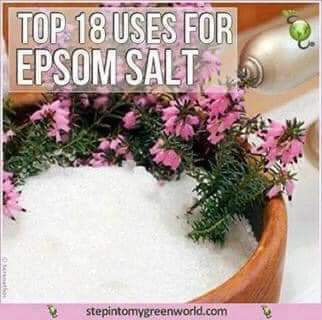 18 Uses for Epson Salts -DIYs and Remedies